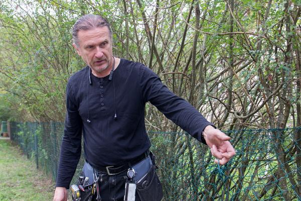 Örjan Rundström gjorde direkt en provisorisk lagning av staketet när han upptäckte att det var trasigt. På bilden har han tagit bort lagningen för att visa hur stor skadan var.