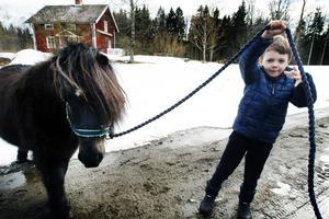 Med Blixten blir Alexander mer öppen och han visar gärna och stolt upp sin ponny.
