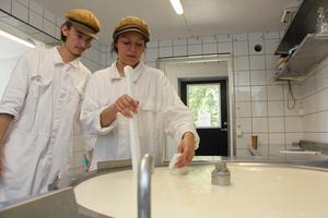 Mjölken värms upp till rätt temperatur. Det är noga att den blir precis innan nästa steg i processen tar vid.