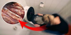 Salmonella har påträffats på en restaurang i Mora och ett 40-tal personer ska ha drabbats. Genrebild. Montage/TT.