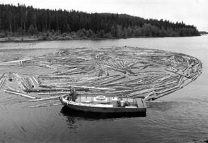 2 miljoner timmerstockar flottades i Rörströmsgrenen 1979.