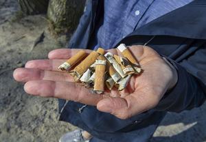För första gången är cigrattfimpen det vanligaste skräpet på stränder längs kusten. Det visar statistik i Håll Sverige Rents årliga Skräprapport som släpptes i april 2019. Foto: Jonas Ekströmer/TT