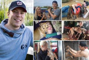 Erik Gustafsson och flickvännen Linn Lidgren har under flera år hjälpt övergivna hundar. Foto: Eric Westlund/Privat.