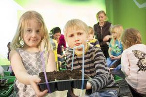 Linnéa Vildelöt, 5 år, och Olle Hedenström, 6 år, visar upp växthuset de gjort.