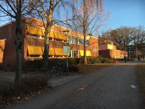 Viksängsskolan är en av de kommunala grundskolorna i Västerås.