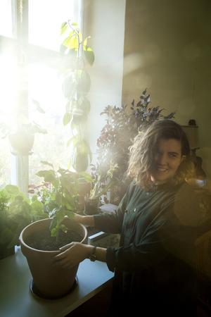 Sofia tycker att det är roligt att plantera kärnor från ätiga växter.  Närmast en citronplanta och den höga växten i bakgrunden är en avokadoplanta.