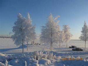 P-platsen före Vallsundsbronpå Frösösidan.En liten oas både sommar som vinter. Foto: Mona Wallander
