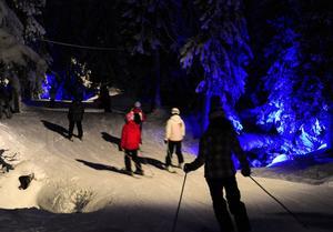 Blått ljus i Trollskogen.