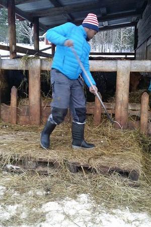 Cia och Mommo praktiserar på en bondgård i närheten av där de bor, för att lära sig mer om att ta hand om djur.