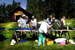Runt 70 personer besökte växtbytardagen som arrangerades för femte året i rad.