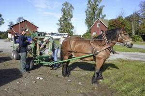 Uppvisning. Anders Hedgren och Göran Keijser förbereder en uppvisning av skogskörning. Ardennern Monia avvaktar lugnt att de ska bli klara.