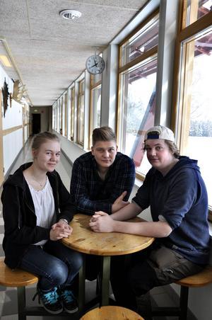 Linn Zwahlen, Per-Erik Svensson och Joakim Eklund går första året på jaktprogrammet på Torsta.