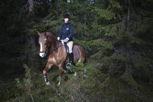 Malin Karlsson är ute och rider på ponnyn Al Capone i skogen runt Frösö Ridcenter.    – Frösön ger möjlighet till goda träningsmöjligheter både i ridhus och i skogen, säger hon.
