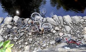 Vattencykling. Rosten har inte hunnit ställa till så mycket med cyklarna. Alla har troligen kastats i Svartån under det senaste året.Foto: Alf Pergeman