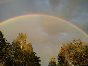 Somewhere over the Rainbow,det är nästan så jag tycker mig se Judy Garland och hennes lilla hund.