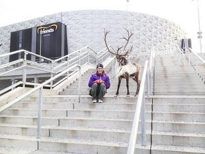 Ulrika tillsammans med Rudolf utanför Friends Arena där de hade ett eget julnummer mellan de internationella tävlingarna i dressyr under Swedish International Horse Show.