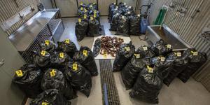 Polisen beslagtog 39 säckar med tomma flaskor med XP-10.