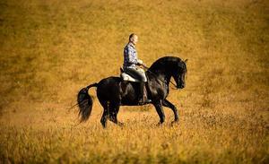 Vladimir på foderhästen Kambiko. Bild: Patricia Bergsten
