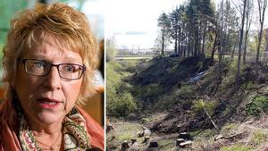 Ewa Lindstrand har svarat på interpellationen som Miljöpartisten Folke Nyström ställt, men det var inte helt raka svar som levererades.