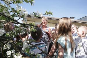 Idag var det dags att för Solveig Bångs klass att släppa ut fjärilarna de fött upp under våren.