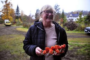 Galina Timmermane tog med sig havtornskulturen från Lettland till Krångede.