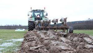 Flygfältets stora gräsyta har inte plöjts på decennier. Uppgifter gör gällande att senast plogen sattes i jorden var i mitten av 1980-talet.