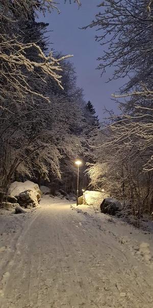Även från Stockholm fick vi in en snöig bild. Foto: Charlotte Gunnarsson