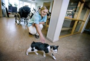 Det bor en liten svanslös katt på Merima Isakovics avdelning på äldreboendet Mikaeligården, och hon älskar sitt jobb. Men ändå vill hon aldrig ha en repris av årets sommar.
