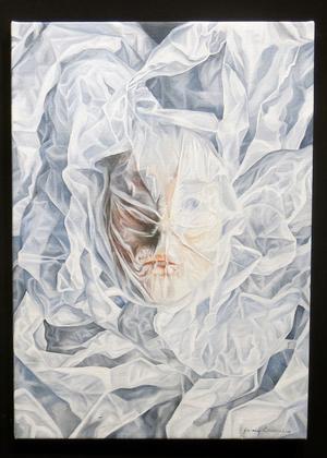 Flera av bilderna visar konstnären under ytan eller, som här, under ett lager av plast.