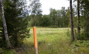 Från orangea pinnen är det hundra meter ner till Hallstaån alldeles bakom träden i bakgrunden.