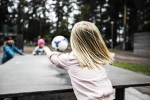 Kommunen vill säkerställa en bra skolgång. det ska göras genom centralisering, säger kommunrådet Mats Dahlström (M).