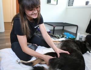 Att massera ger mycket för såväl hund som massör.