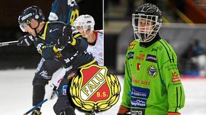 Daniel Bäck har förlängt med Falu BS. Dessutom gör uppgifter gällande att Max Bergström ska flytta till Falun – och parterna bekräftar att de haft kontakt.
