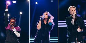Foto: Annika Berglund/TV4
