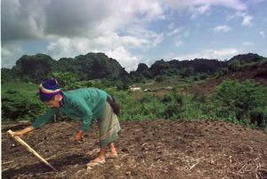 Att hitta ett hållbart utnyttjande  i Laos av  jordens resurser har hört till Martin Forséns uppgifter. Foto: TT