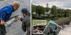 I år har det varit ett kanonår för Nipstadsfisket.