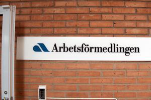 Man undrar vad man har för människosyn när man tror att en betydande del av svenskarna skulle föredra arbetslöshet framför arbete bara för att ersättningen är skälig, skriver insändarskribenten.
