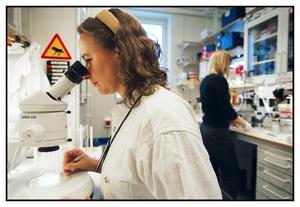 Tankesmedjan Vård och vetenskap skriver om behovet av att använda medarbetarna inom vården för att tillsammans med forskarna lösa framtidens problem. FOTO: FREDRIK PERSSON