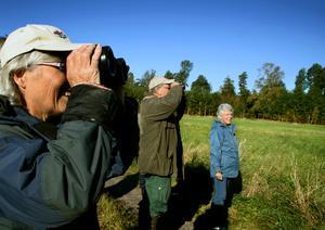 På spaning efter nya pristagare? Inga-Lill och Åke Telgå, här med kikare framför ögonen, fick Kumla kommuns miljöpris 2013. Bilden är tagen 2007 vid en höstvandring arrangerad av Naturskyddsföreningen. Foto: NA arkiv