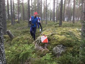 Henrik Trolin och Robert Pettersson från Forsa OK stormar fram i snöfria marker när klubben ordnade träningsorientering på Josefsberg på söndagen.