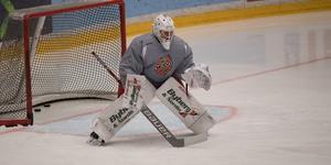 Dackell har fått sin hockeyfostran i Brynäs IF, men är sedan fjolåret bosatt i Örnsköldsvik.