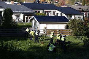 Ett stort antal poliser krattar noga igenom  ett grönområde.