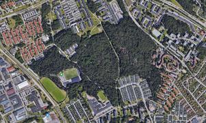 Om du vill vandra i Råbyskogen är en bra startpunkt Råby IP,  i västra delen av området.