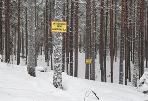 Skyltar har satts upp för att markera att skogen bör bevaras.