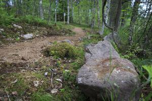 Stenarna i förgrunden låg tidigare djupt ner i marken med övre delen uppstickande.