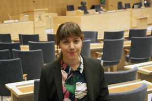 Västeråsaren Vasiliki Tsouplaki (V) är vice ordförande i kulturutskottet och hon framhåller att kuturlsamverkansmodellen fungerar bra för Västmanland.