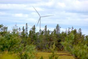 Vindkraftsparken på Kyrkberget, Mora, på väg upp till Lybergsgnupen i Malung. Foto: Bente Mellquist Danielson