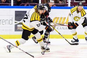 Adam Brodecki var mästerlig mot Malmö. Bild: Niclas Jönsson / BILDBYRÅN