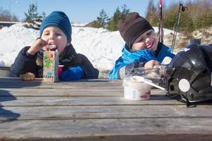 Collin och Lucas Björklund Olsson, 2 och 4 år, njuter av fikat i solen.