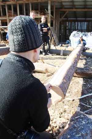 Två av timmermännen tar ut klyvlinjen med hjälp av en sotad lina. Varje stock ska ge två tretumsplankor.